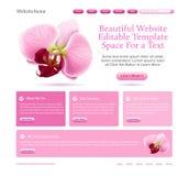 Web site para belezas Imagem de Stock
