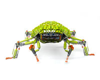 Web spider Fotografia Stock Libera da Diritti