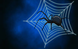 Web with spider Royalty Free Stock Image