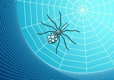 Web and spider vector Royalty Free Stock Photo