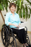 Web Surfing in Wheelchair Royalty Free Stock Images