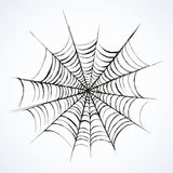 Web. Vector drawing. Big tissue  on white backdrop. Freehand outline black ink hand drawn picture sketchy in art scribble retro style pen on paper. Closeup view Stock Photography