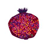 illustration of dark red and purple pomegranate stock illustration