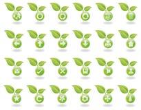 Web vert de nature de boutons Images stock