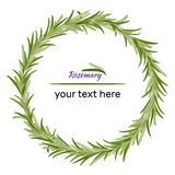 Wreath of rosemary branches. Vector illustration of herbs. Perfect for card, packaging, menu design. Vector illustration royalty free illustration