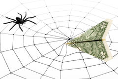 Web y dólar de araña Fotos de archivo libres de regalías
