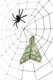 Web y dólar de araña Imagen de archivo libre de regalías