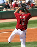 webb för arizona brandondiamondbacks Royaltyfria Foton
