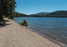 Webber Lake, northern California Stock Image