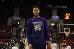 Weber State Wolfs Royalty Free Stock Photography