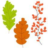 WebSet van kleurrijke de herfstbladeren en bessen Ge?soleerdj op witte achtergrond Eenvoudige beeldverhaal vlakke styl royalty-vrije illustratie
