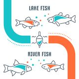 Website Banner and Landing Page of Lake and River Fish. Line illustration of lake and river fish. Concept for web banners and printed materials. Template for Royalty Free Stock Photos