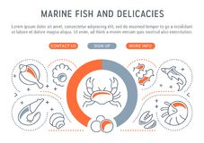 Website Banner and Landing Page of Marine Fish and Delicacies. Line illustration of marine fish and delicacies. Concept for web banners and printed materials Stock Image
