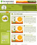 Website template 45. Website template design along with icons and images. Natural product food related Stock Images