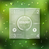 Website template design. Ecology background Royalty Free Stock Photo