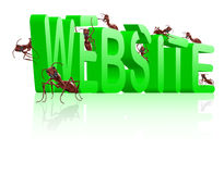 Website under construction web development. Www web site under construction website development internet page building ants creating green 3D word royalty free illustration