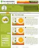 Websiteschablone 45 lizenzfreie abbildung