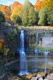 Webster's Falls in Hamilton. Stock Photo
