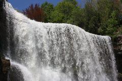 Websters Wasserfall lizenzfreie stockbilder
