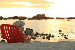 Websurfing Sonnenuntergang Lizenzfreies Stockbild
