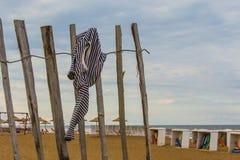 Wecken auf dem Strand Lizenzfreies Stockbild