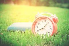 Wecker auf grünem Gras im Park Lizenzfreies Stockbild