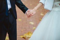 Wed recentemente as mãos do par com alianças de casamento Foto de Stock