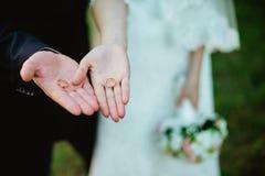 Wed recentemente as mãos do par com alianças de casamento Imagens de Stock Royalty Free