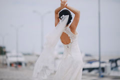 Wedding в Одессе; Стоковые Фото