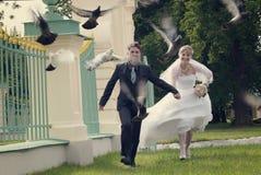 День свадьбы Стоковое Фото