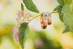 2 wedding золотых кольца на ветви Стоковые Фотографии RF