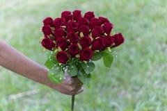 Wedding насыщает красную розу Стоковые Изображения