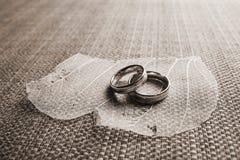 Wedding на лепестках Стоковые Фото