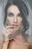 Wedding. Портрет ласкового брюнет невесты в вуали стоковое фото