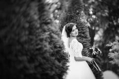 Wedding прогулка на природе с лошадью Стоковое фото RF