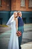 Wedding прогулка на природе Стоковое Фото