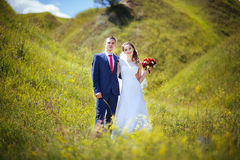 Wedding прогулка на природе Стоковые Фото