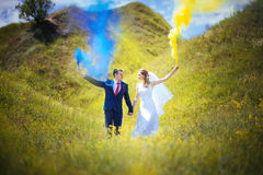 Wedding прогулка на природе Стоковое Изображение RF