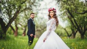 Wedding прогулка на природе Стоковая Фотография RF