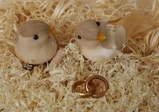 2 wedding пташки на деревянных shavings с обручальными кольцами Стоковая Фотография RF