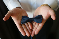 Wedding смычок Стоковое Фото