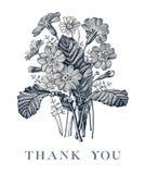 Wedding спасибо и приглашение Вектор рамки карточки PrÃmula цветков стоцвета красивый реалистический гравируя викторианскую иллюс Стоковое фото RF