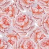 Wedding флористическая безшовная картина 2 Стоковая Фотография RF