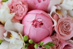 Wedding формы Bridal букета классические в розовых тонах Wedding floristry пион большой Стоковое Изображение