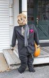 Wedding чучело Groom Стоковые Фото