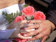Wedding 1. Two hands and two rings royalty free stock photo