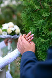 WEDDING. Gentle hands loving couples in a warm summer day Royalty Free Stock Image