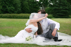 Wedding. Kissing wedding young couple, sitting on a green glade Royalty Free Stock Photography