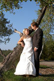 After wedding. Young couple contemplation their love Royalty Free Stock Photos