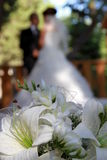 Wedding. Bride wearing silk cream dress holding beautiful bouquet of lily and gereba flowers with diamond centres Royalty Free Stock Photography